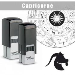 Signe du zodiaque : Capricorne
